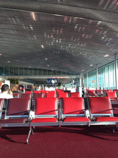 Sala de Espera del Aeropuerto Charles de Gaulle.