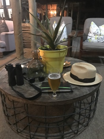 Thornybush, Limpopo, Safari, Hat, Beer