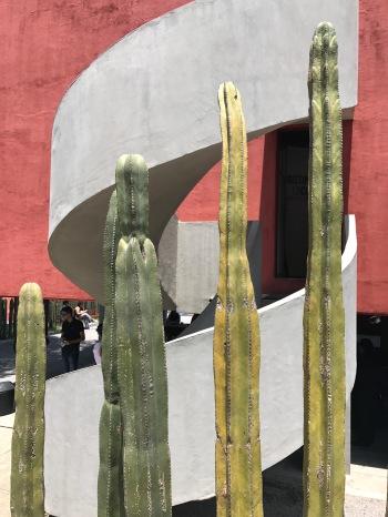 escalera, cactus, Juan O'Gormann